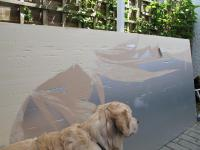 [Alfie looking at my work.JPG uploaded 6 Aug 2012]