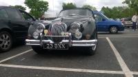 [Jaguar 150.jpg uploaded 19 Sep 2015]
