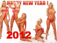 [thumb3__happy_new_year_.jpg uploaded 31 Dec 2011]